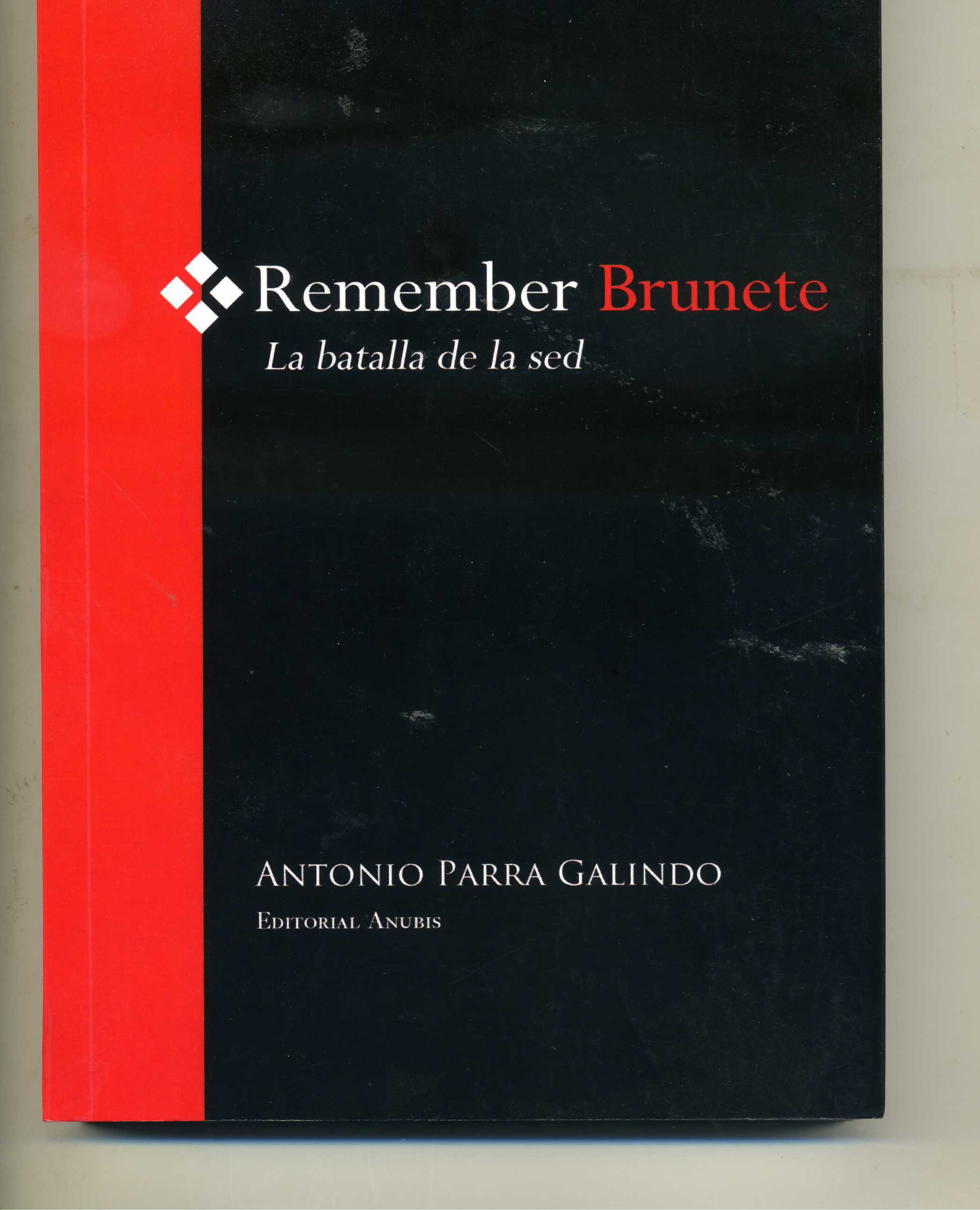 REMEMBER_BRUNETE_PORTADA_1